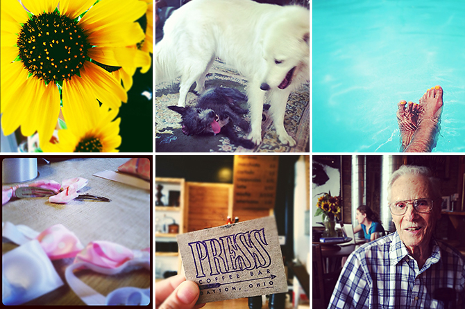 instagrams-sunflowers-swimming-pool-hairbows