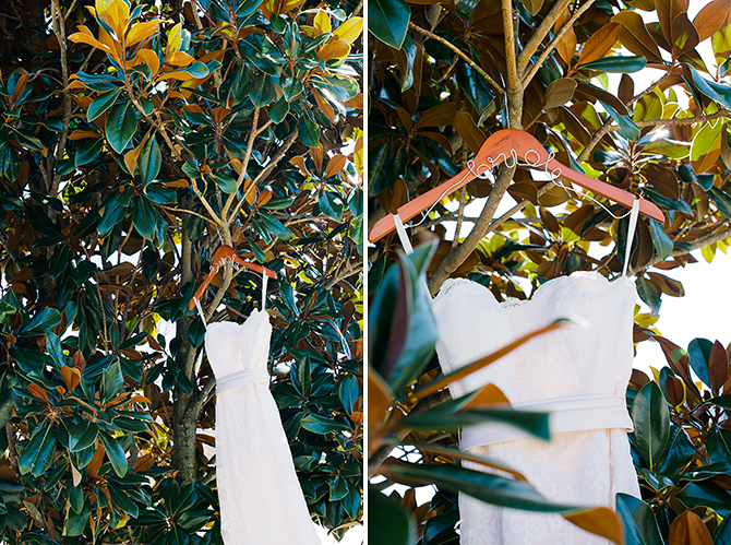 north carolina wedding photograph of dress in a tree